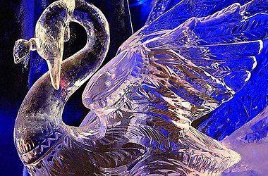 В Киеве пройдет фестиваль новогодних елок и скульптур из льда