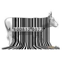 Як перевірити товар за штрих-кодом?