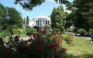 Прогулка столицей: Ботанический сад имени Александра Фомина