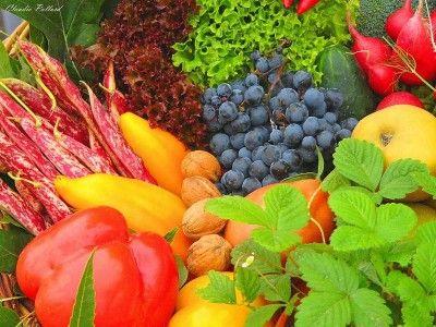 9 - 13 апреля в Киеве пройдут сельхоз ярмарки