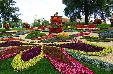 Тысячи цветов раскрылись на Певческом поле